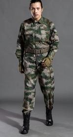 军训迷彩上海五星体育在线直播观看高清003
